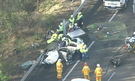 Woman and seven-year-old boy killed in head-on crash south of Sydney