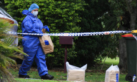 Baby in critical condition after being slashed in the face in Brisbane