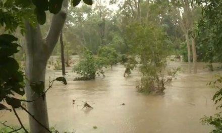 Cyclones potential off Queensland as state cops deluge of rain