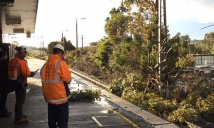 More rain to follow after intense storm hits Melbourne