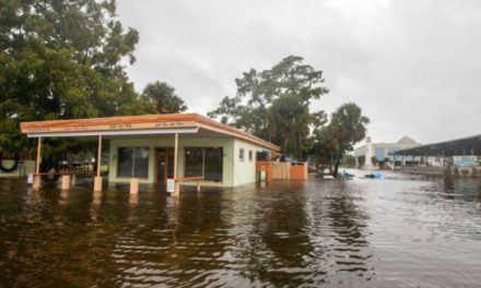 Hurricane Michael: Category four storm lashes Florida coast