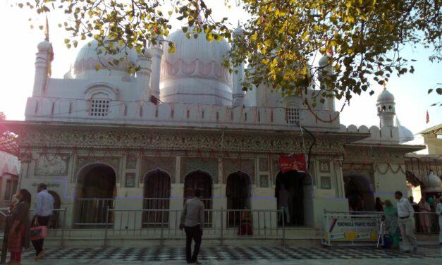 Mansa Devi – the Wish-fulfilling Goddess