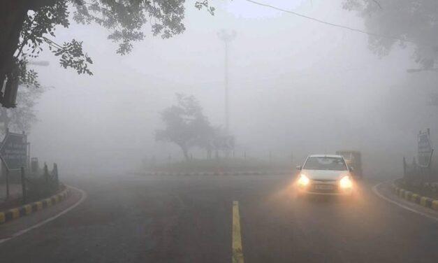 Rain intensifies cold wave in Punjab, Haryana