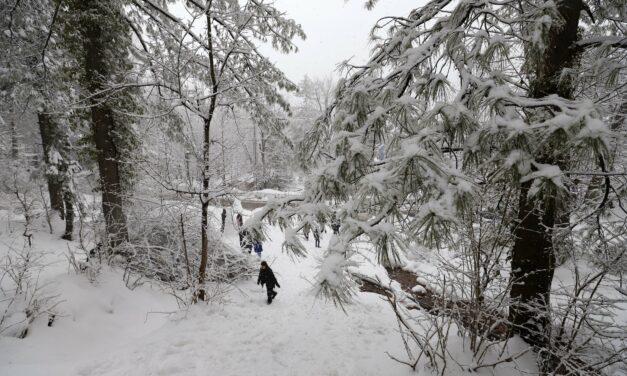 30 killed in Pakistan due to heavy snow, rain